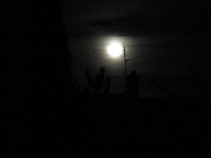 Moon Sentry