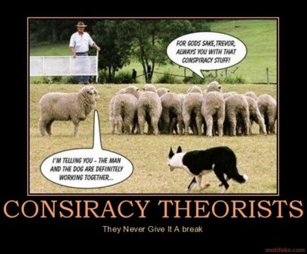 con-siriusy-sheep