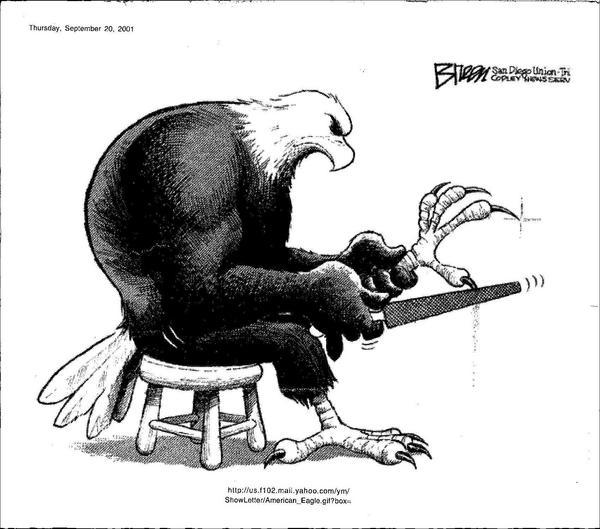 eagle-sharpening-talons