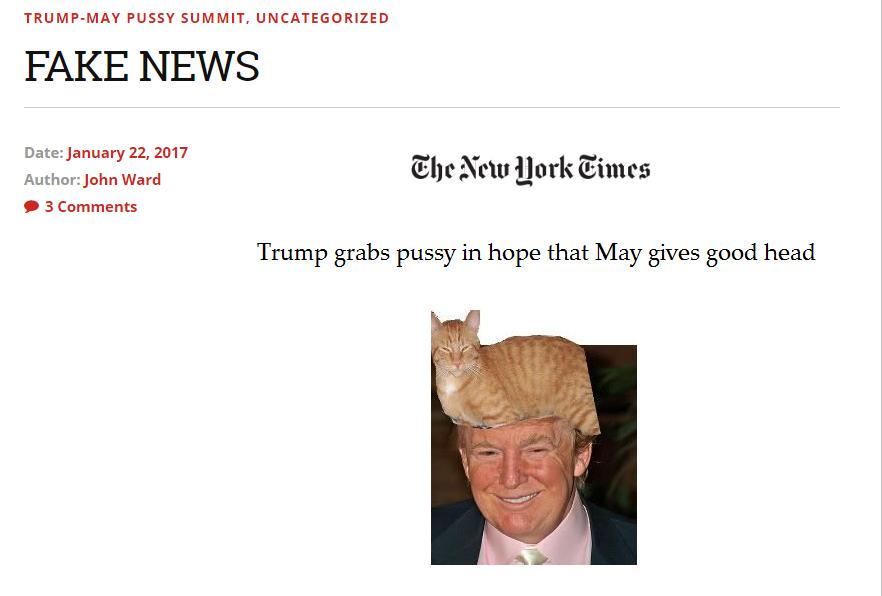 slog-fake-news-trump-barnet-formula