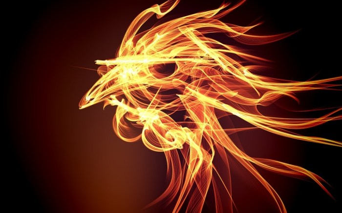 chinese-year-of-fire-rooster-2017