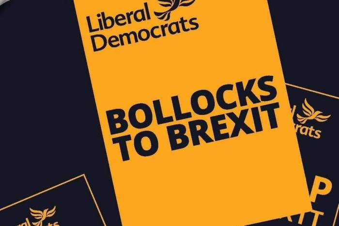Limp Dims Bollocks to Brexit