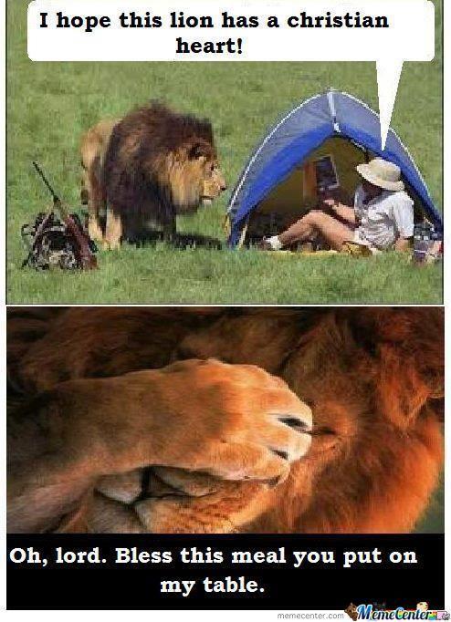 lion_o_683209