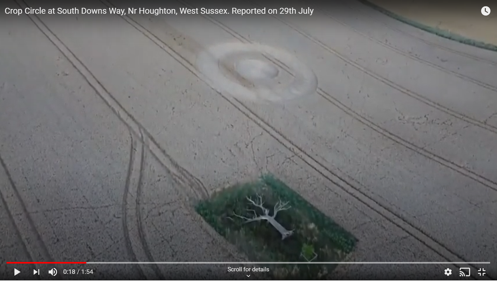 Houghton crop circle and tree