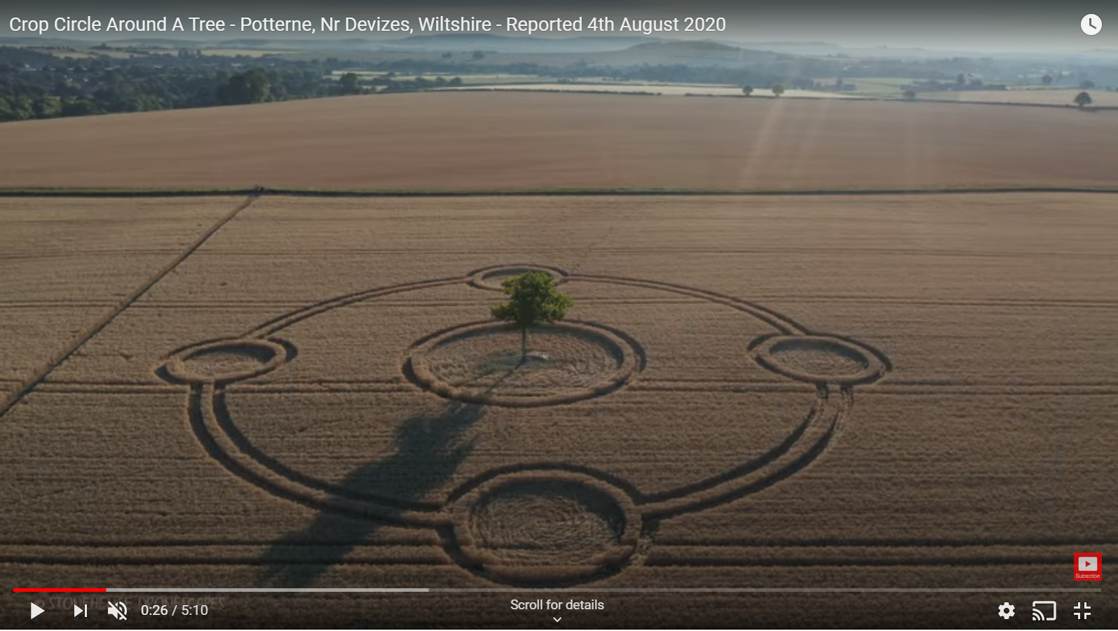 Potterne crop circle around tree